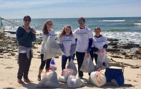 Save Our Beaches!